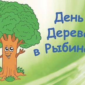 Сдал бумагу – спас дерево