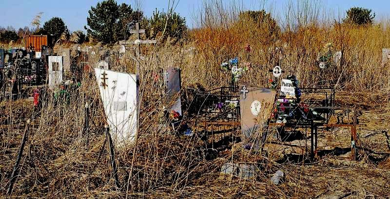 кладбище1