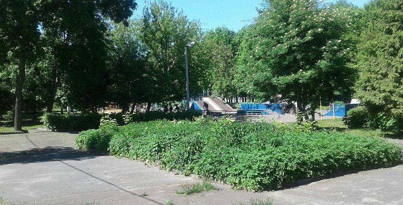 Волжский парк в Рыбинске
